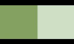 COSM 77288 / VERT OXYDE DE CHROME